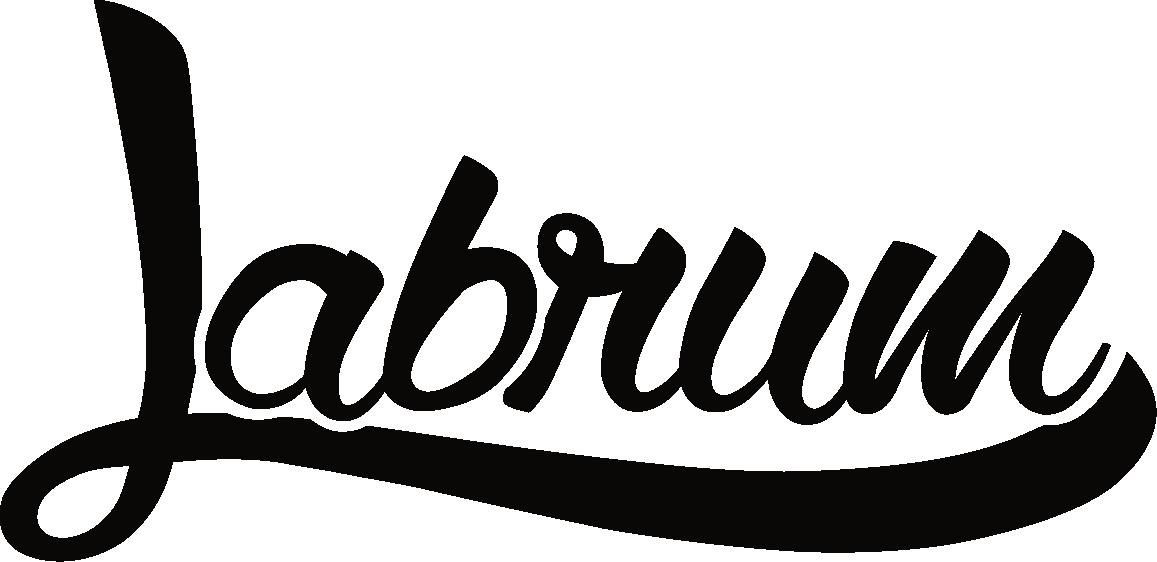 Labrum Ford